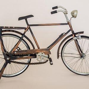 Bicicleta.2