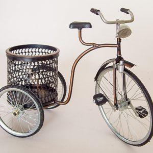 Bicicleta.5