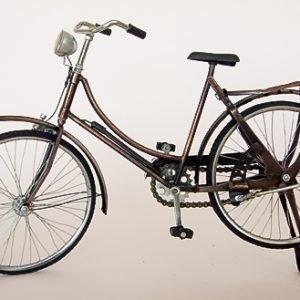 Bicicleta.3
